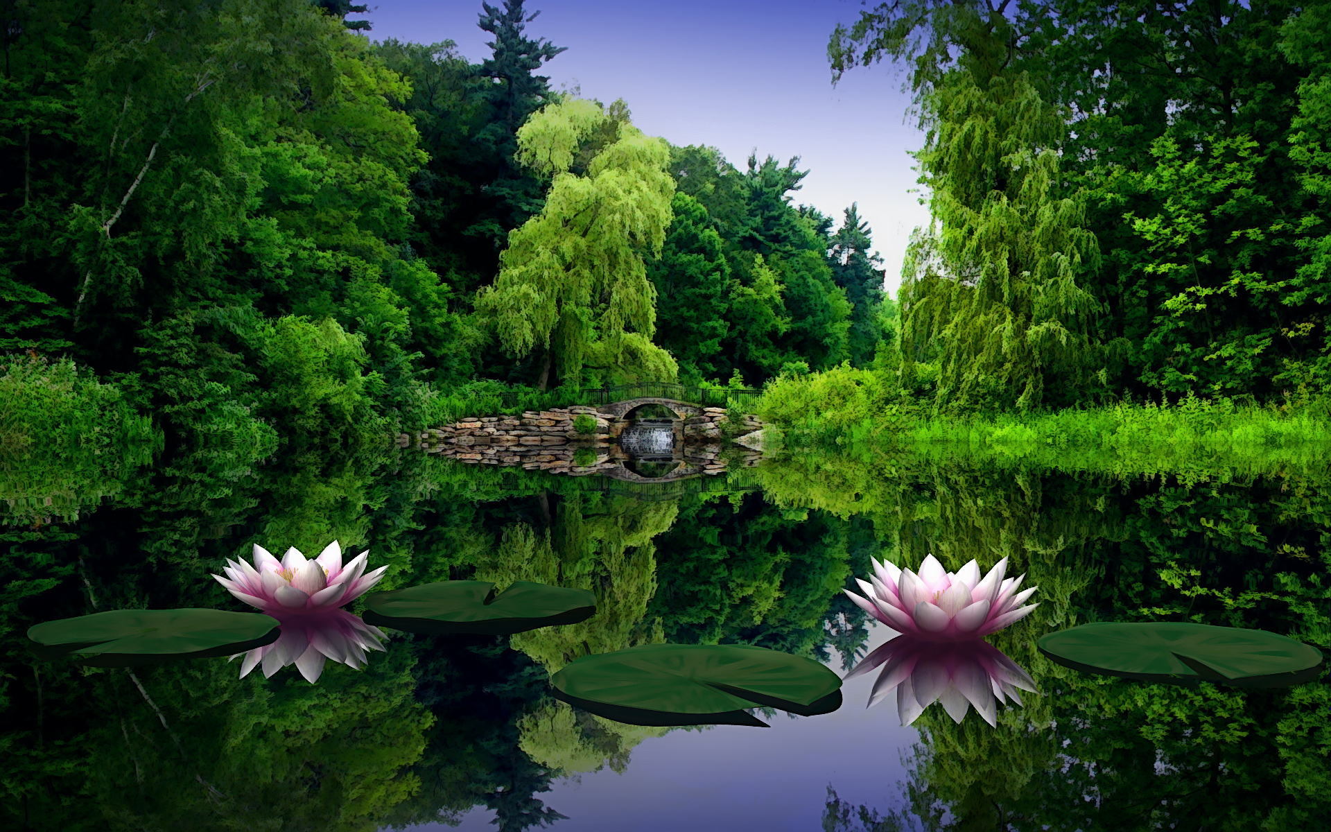 Lotus flower lake wallpapers lotus flower lake click to view mightylinksfo