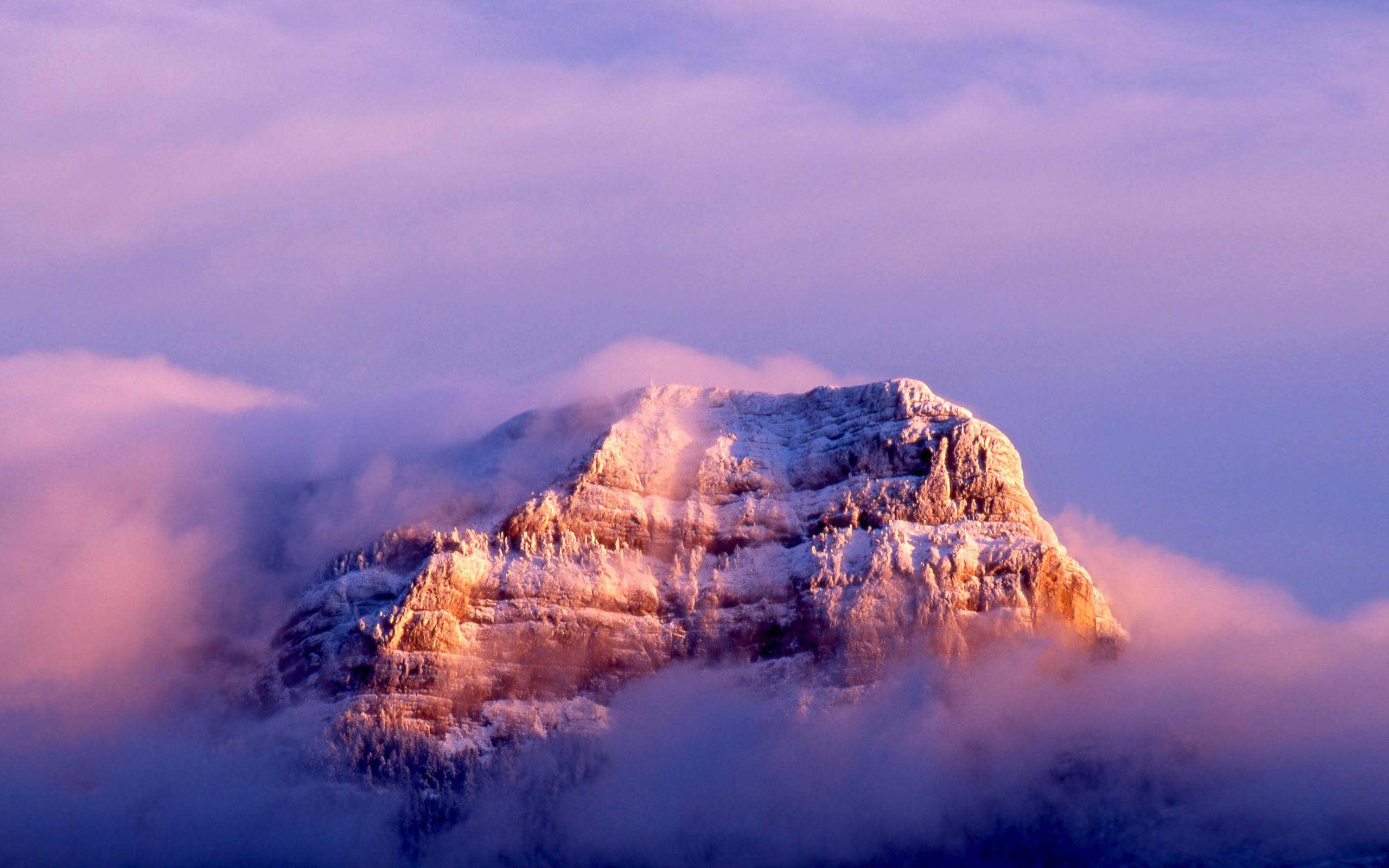 Mac Os X Snow Leopard Wallpapers 2560x1600 1247253