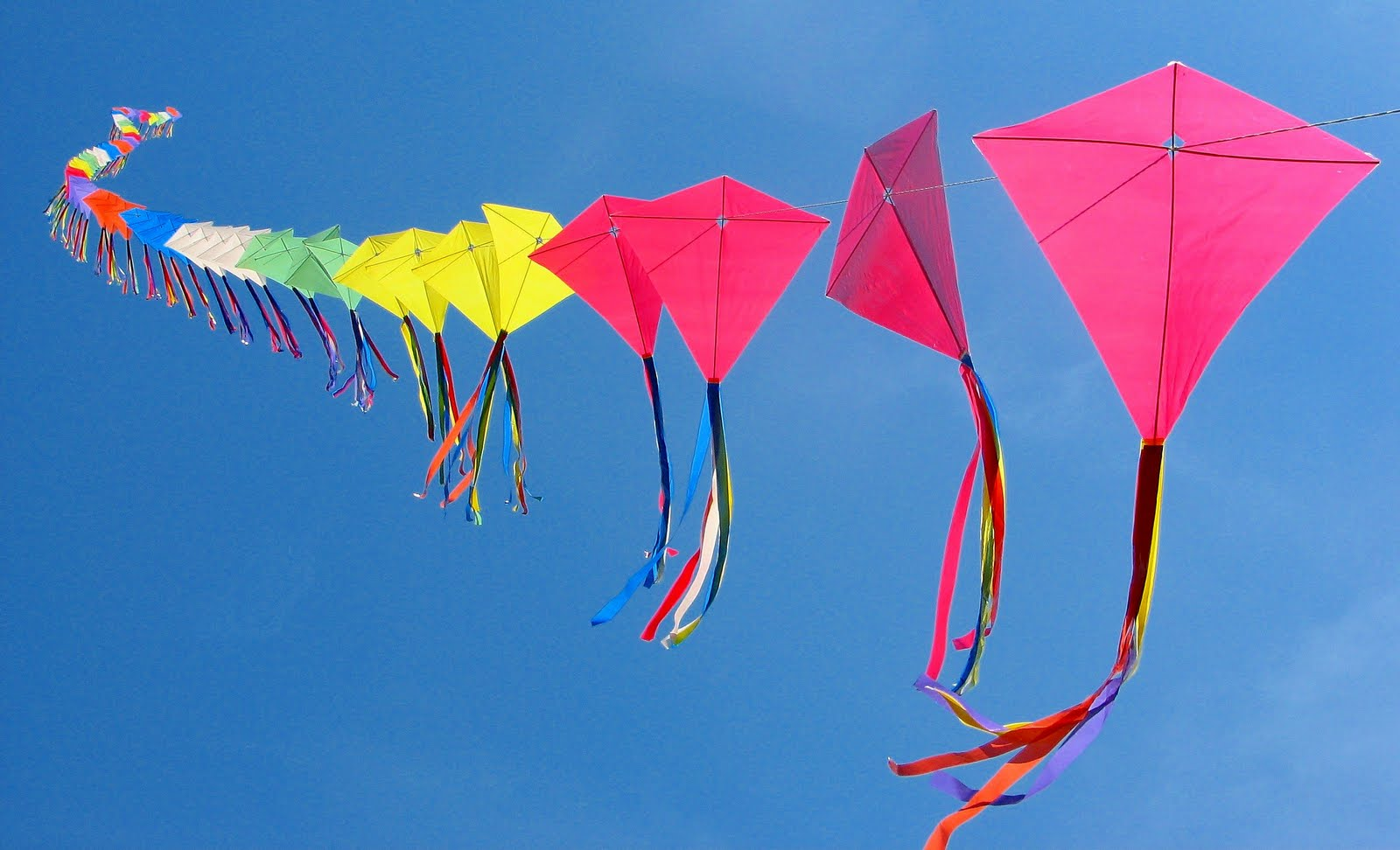 Makar Sankranti Colorful Kites