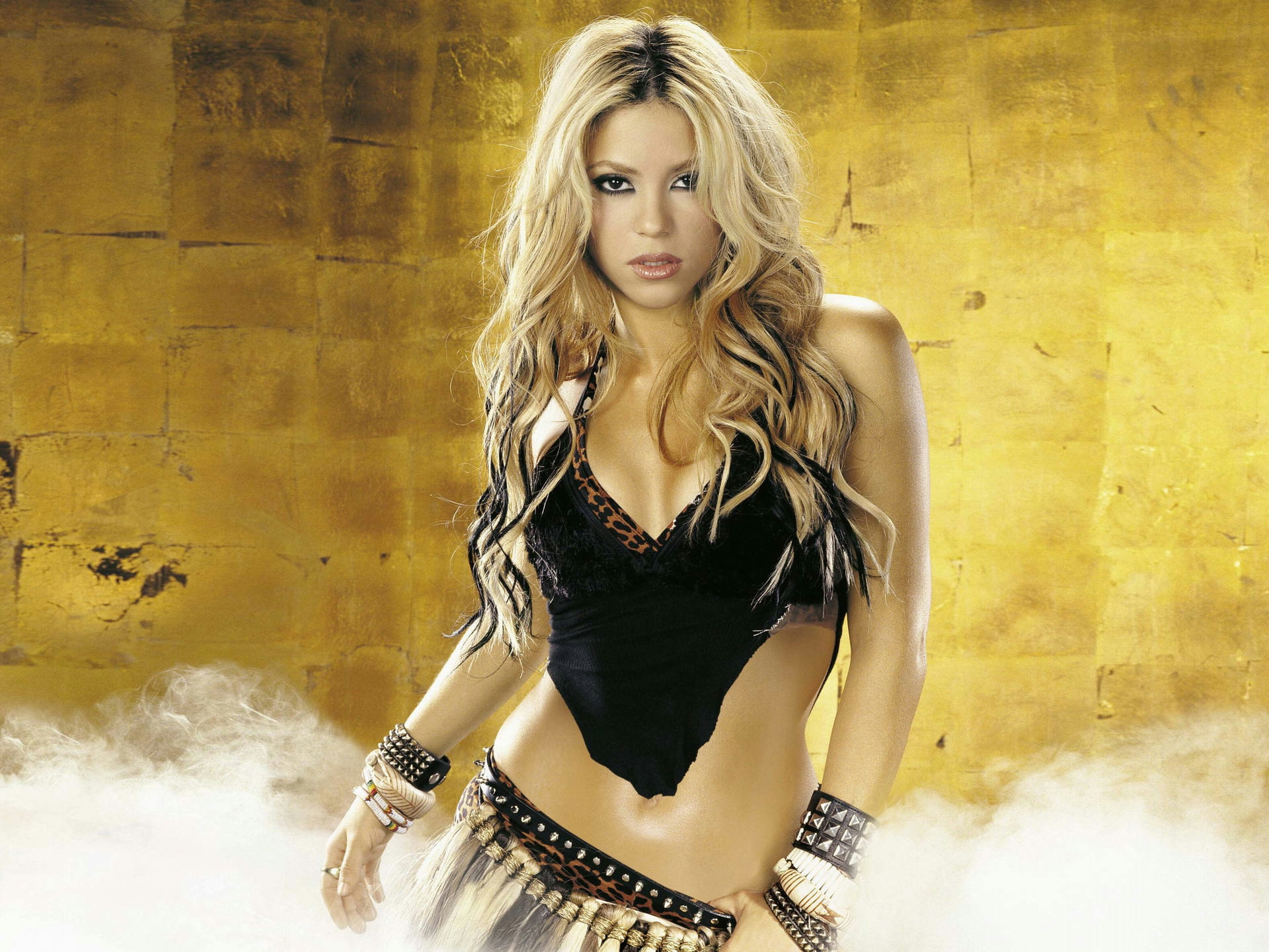 Shakira Pop Singer