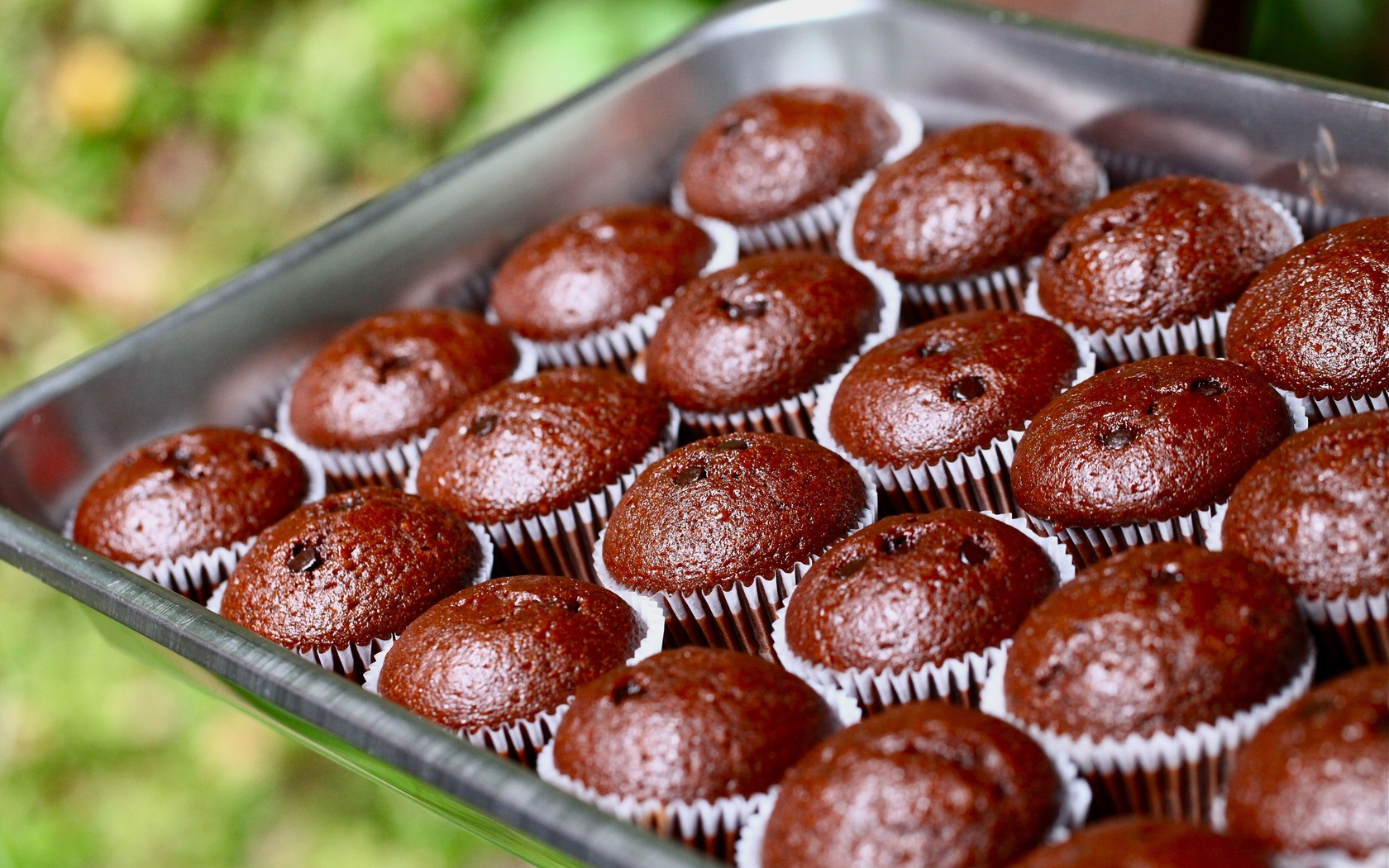 Sweets Delicious Cupcakes | 1680 x 1050 | Download | Close