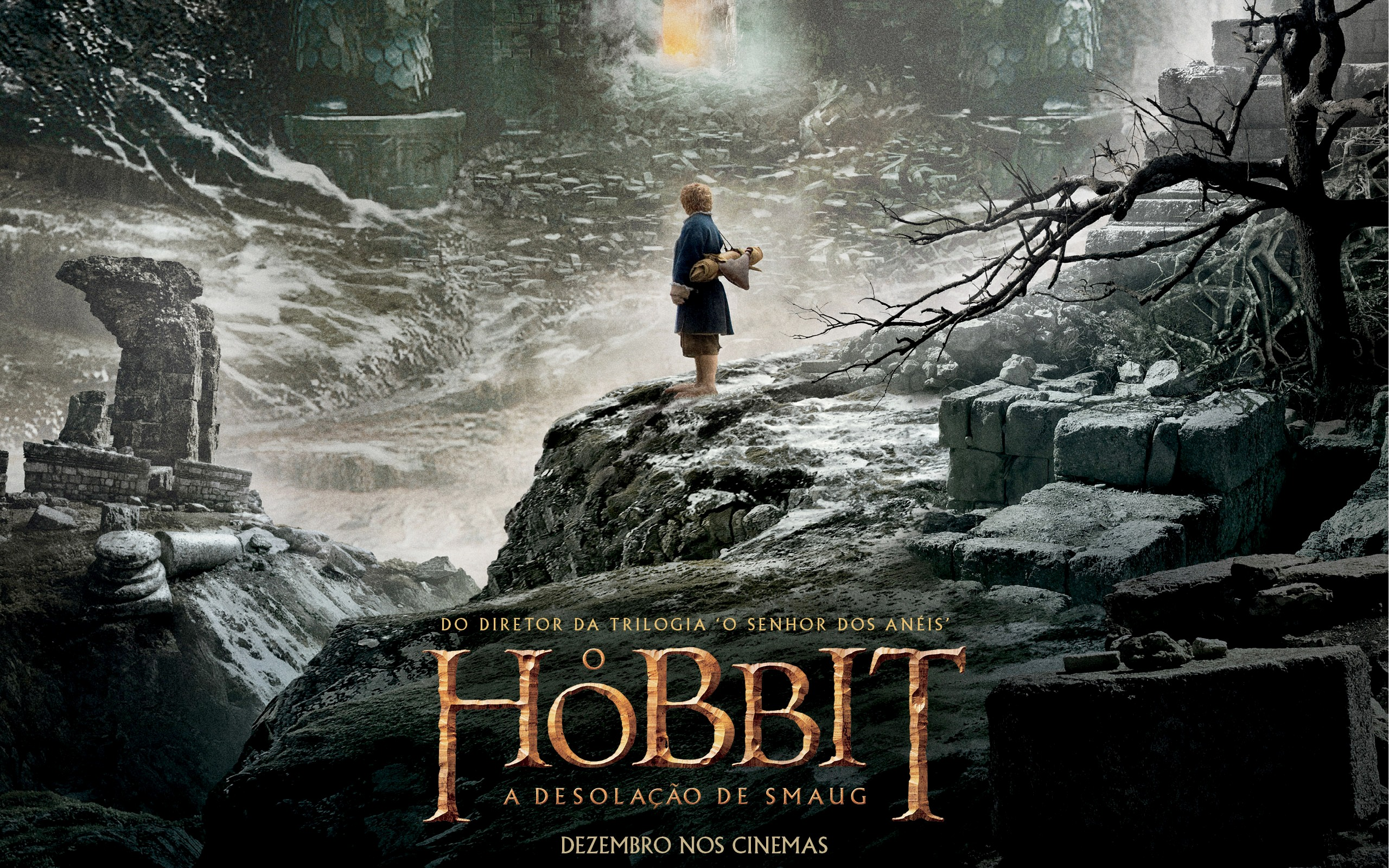 the hobbit: the desolation of smaug (2013) wallpapers - 2560x1600