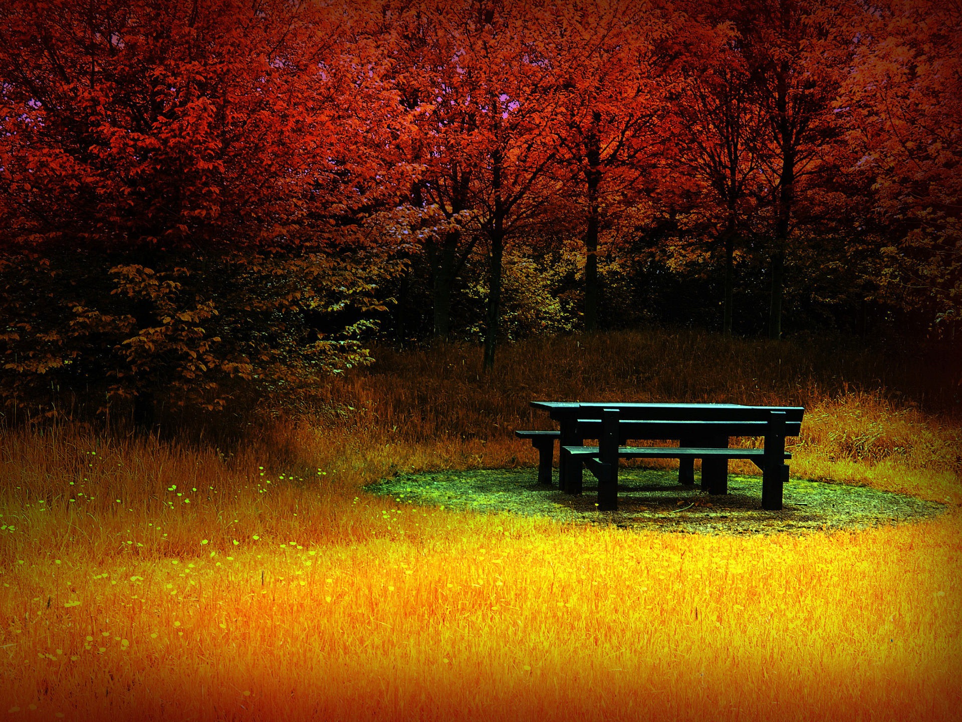 Tranquility of Autumn