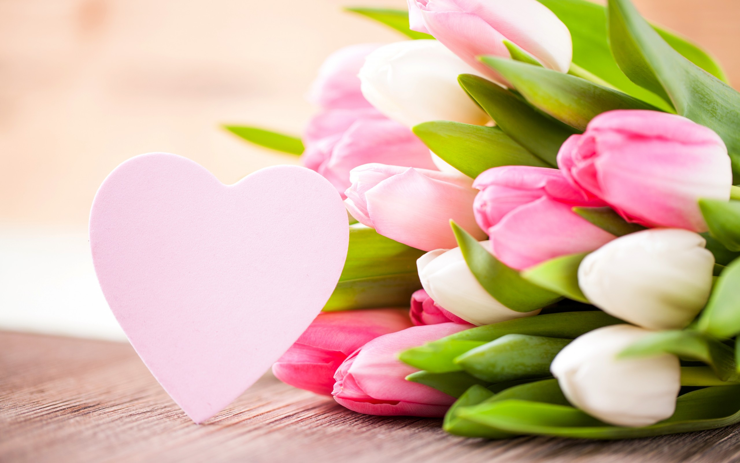 Tulips Pink Flower And Heart Wallpapers 2560x1600 426025