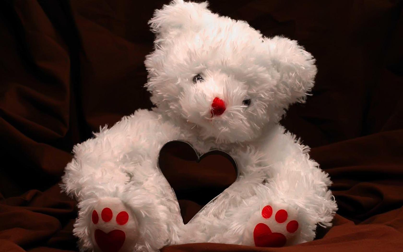 Valentine's Teddy Bear | 1680 x 1050 | Download | Close