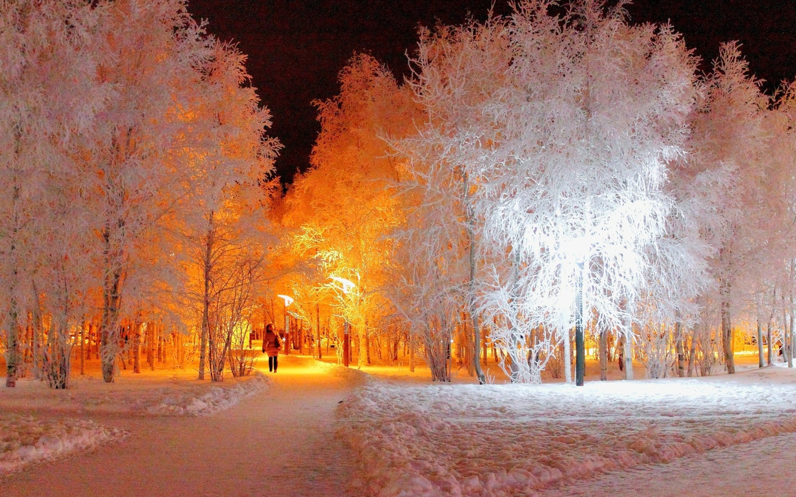 Winter Night Lighting Wallpapers